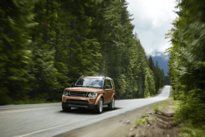 Range Rover in brown driving through tall forest