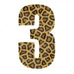 The number 3 in leopard print with a white background